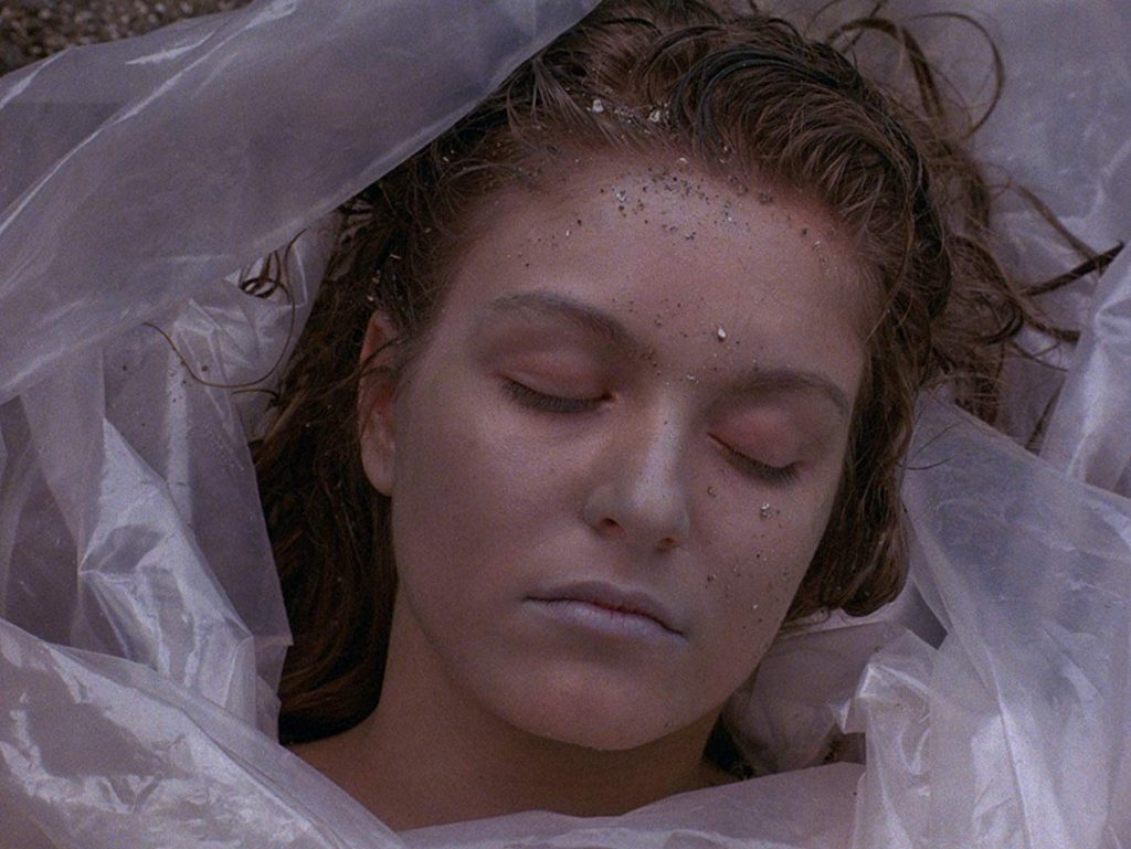 Loud and Clear Reviews Twin Peaks Laura Palmer beginner's guide David Lynch