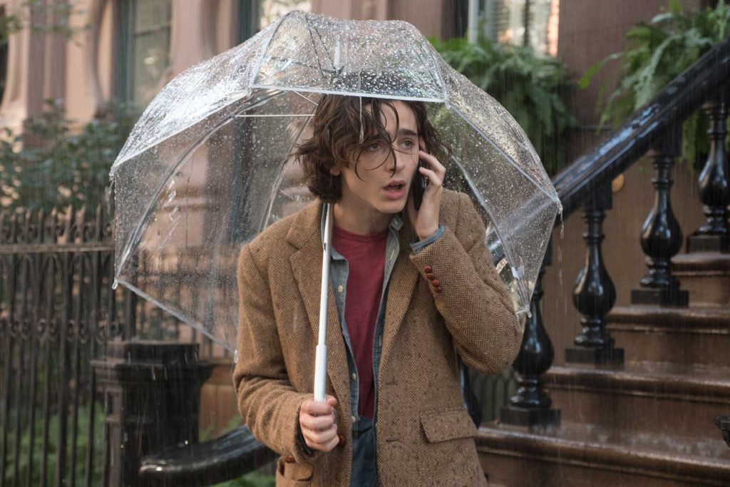 loud and clear reviews a rainy day in new york woody allen timothee chalamet
