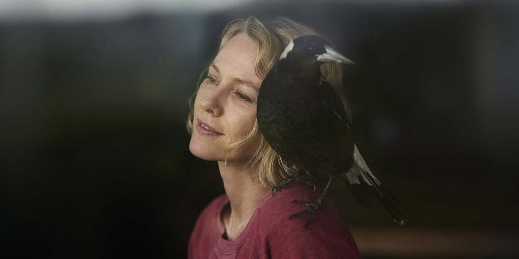 loud and clear reviews  penguin bloom naomi watts