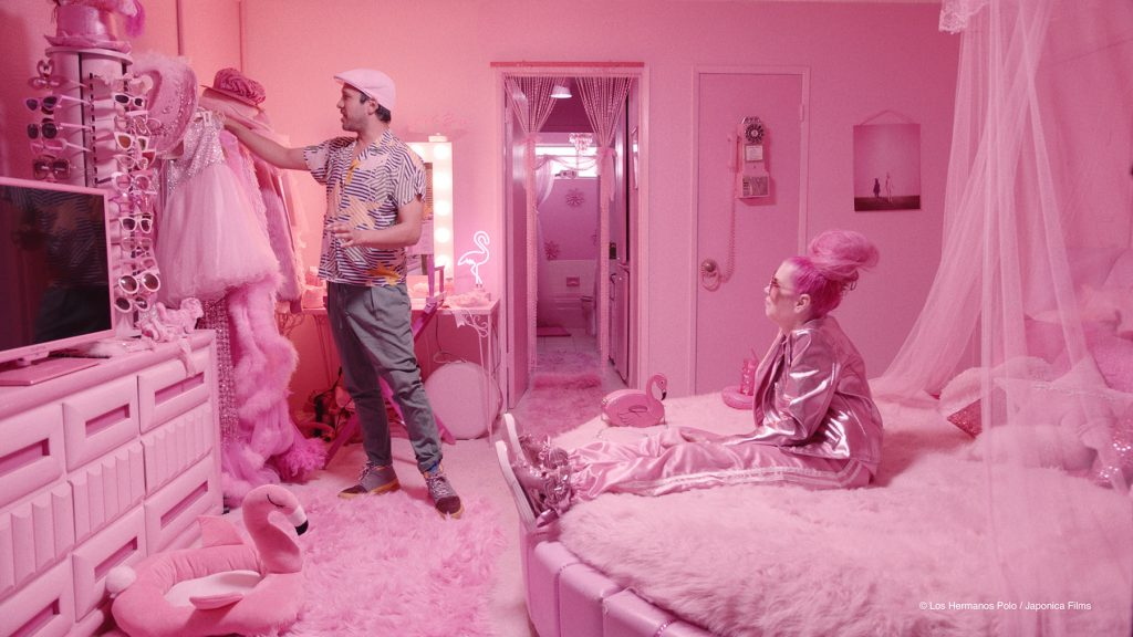 loud and clear reviews The Mystery of the Pink Flamingo